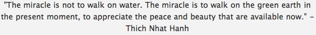 Quote The Miracle — Nhat Hanh